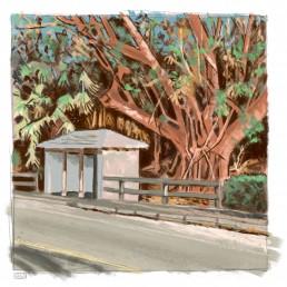 Bermuda painting study 01