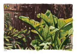 Bermuda painting study 03
